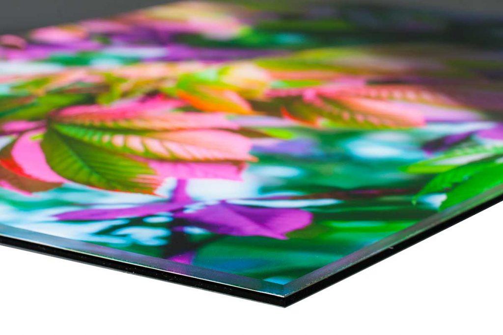 Großformat Druck Acrylglas